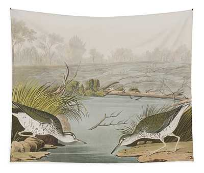 Spotted Sandpiper Tapestry