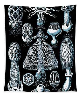 Stinkhorn Mushrooms Vintage Illustration Tapestry