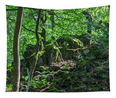 Stones In A Forest In Vogelsberg Tapestry