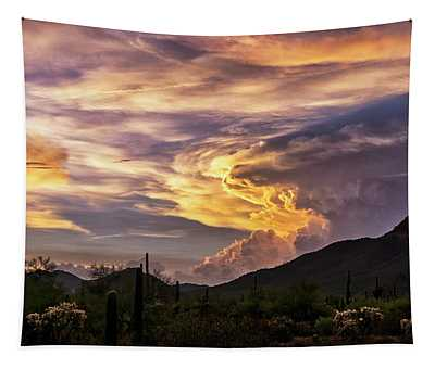 Stormy Sunset Skies In The Sonoran  Tapestry