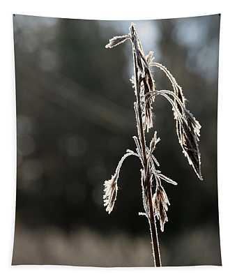 Straw In Backlight Tapestry