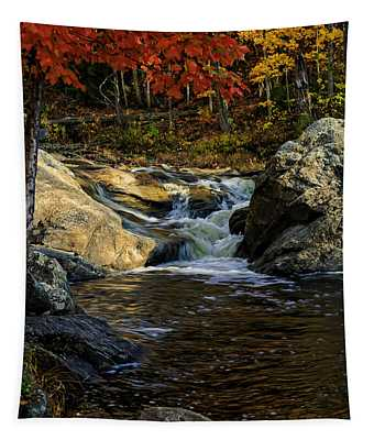 Stream In Autumn No.17 Tapestry
