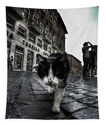 Street Cat Tapestry