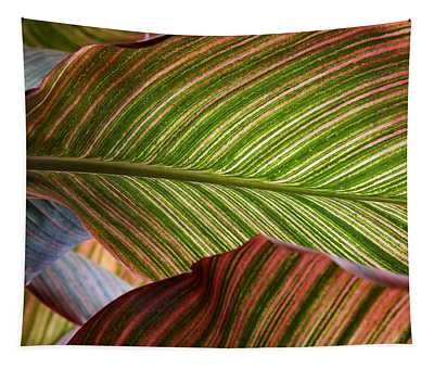 Striped Canna Lily Leaves Tapestry