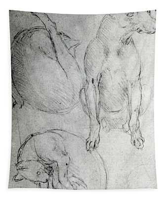 Study Of A Dog And A Cat Tapestry