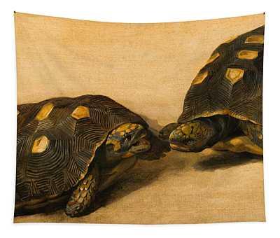 Study Of Two Brazilian Tortoises Tapestry