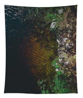Summer Lake - Aerial Photography Tapestry