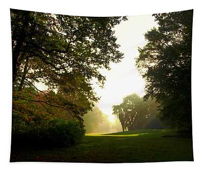 Sun Beams In The Distance Tapestry