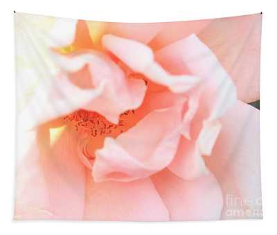 Sun-drenched Rose Tapestry