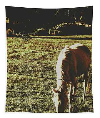 Sundown Horse Meadow Tapestry