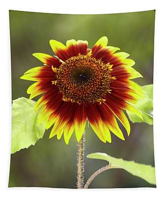 Sunflower 2 Tapestry