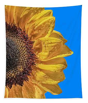 Sunflower In The Sun Tapestry