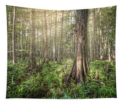Sunlight In The Glade Tapestry