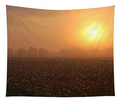 Sunrise And The Cotton Field Tapestry