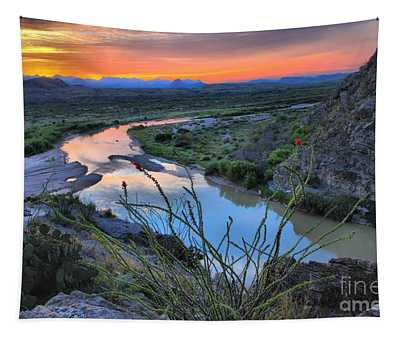 Sunrise Over The Ocatillo Tapestry