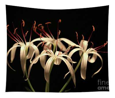 Swamp Lily Tapestry