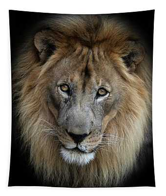 Sweet Male Lion Tapestry