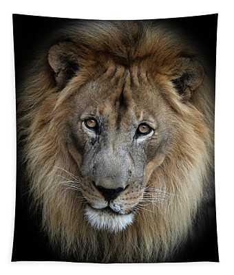 Sweet Male Lion Portrait Tapestry