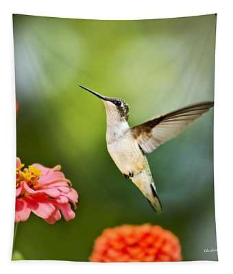 Sweet Promise Hummingbird Square Tapestry