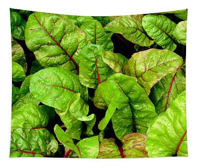 Swiss Chard In A Vegetable Garden 3 Tapestry