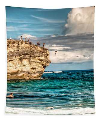 Take The Plunge Tapestry