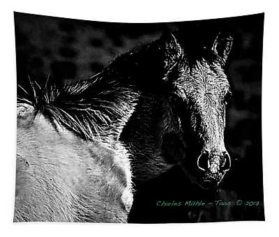 Taos Pony In B-w Tapestry