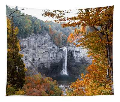 Taughannock Autumn Tapestry