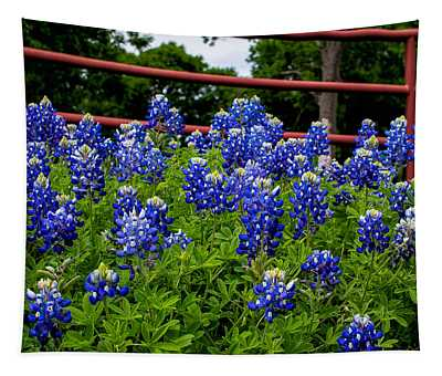 Texas Bluebonnets In Ennis Tapestry