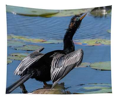 The Bird, Anhinga Tapestry