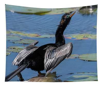 The Bird, Anhinga Tapestry