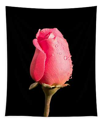 The Beauty Of A Rose Tapestry