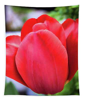 The Tulip Beauty Tapestry