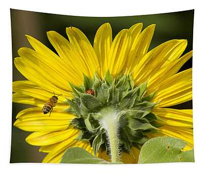 The Bee Lady Bug And Sunflower Tapestry