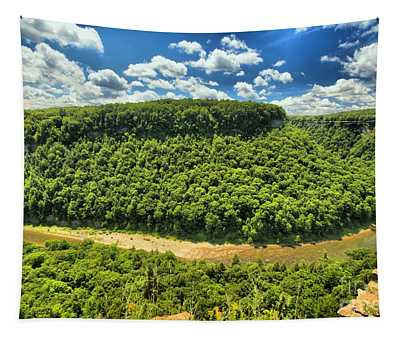 The Big Bend Tapestry