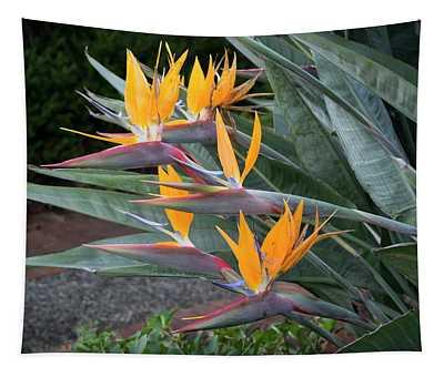 The Crane Flower - Bird Of Paradise  Tapestry