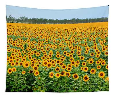 The Field Of Suns Tapestry