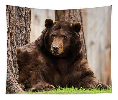 The King Of Tahoe By Brad Scott Tapestry