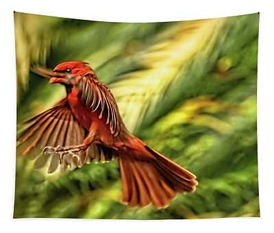The Male Cardinal Approaches Tapestry