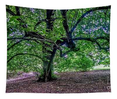 The Old Tree At Frelinghuysen Arboretum Tapestry