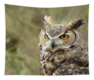 The Owl Tapestry