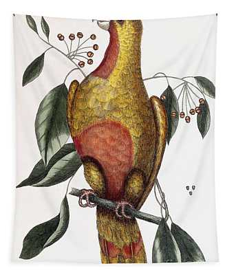 The Parrot Of Paradise, Psitticus Paradisis Tapestry