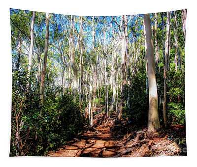 The Pathway 407 - Aiea Loop Trail Tapestry