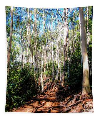 The Pathway 407 S - Aiea Loop Trail Tapestry