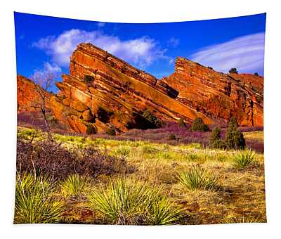 The Red Rock Park Vi Tapestry