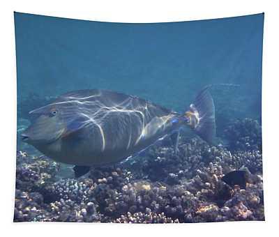The Red Sea Bluespine Unicornfish Closeup Tapestry