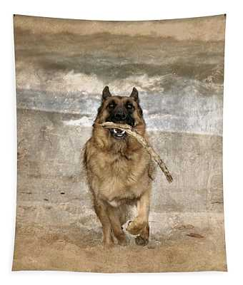 The Retrieve Tapestry