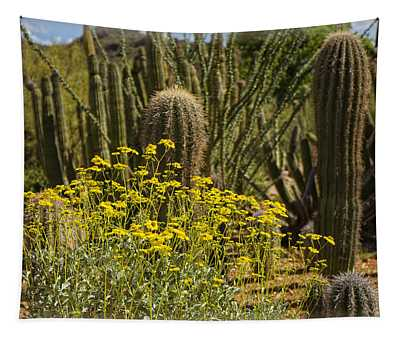 The Song Of The Sonoran Desert Tapestry