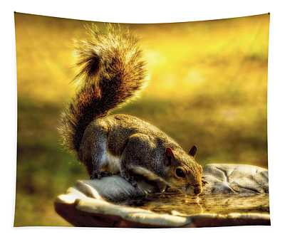 The Squirrel Tapestry