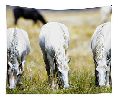 The Three Amigos Grazing Tapestry