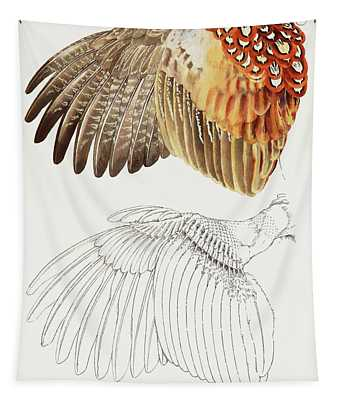 The Upper Side Of The Pheasant Wing Tapestry